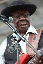 Chicago BluesFest. 15-06-2014 118