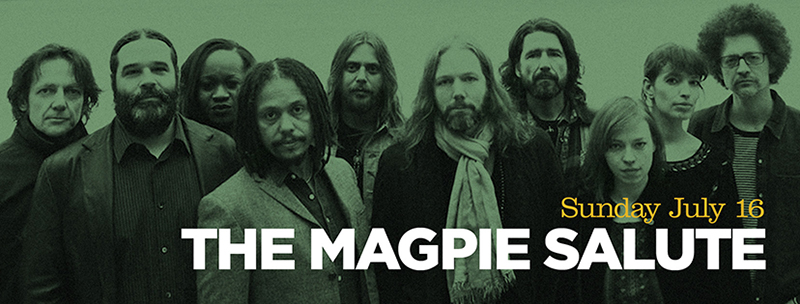 band_magpie
